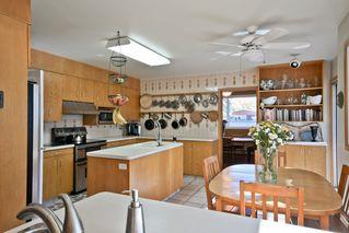 Photo 8: 14003 89 Avenue in Edmonton: Zone 10 House for sale : MLS®# E4187760