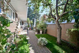 Photo 18: 14003 89 Avenue in Edmonton: Zone 10 House for sale : MLS®# E4187760