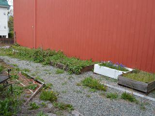Photo 20: 2988 2nd Ave in PORT ALBERNI: PA Port Alberni Single Family Detached for sale (Port Alberni)  : MLS®# 838477