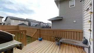 Photo 41: 3127 25 Avenue in Edmonton: Zone 30 House for sale : MLS®# E4196171