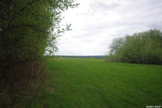 Photo 23: Weiss Lakefront Acreage in Big River: Farm for sale : MLS®# SK834154