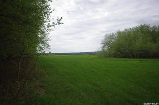 Photo 25: Weiss Lakefront Acreage in Big River: Farm for sale : MLS®# SK834154