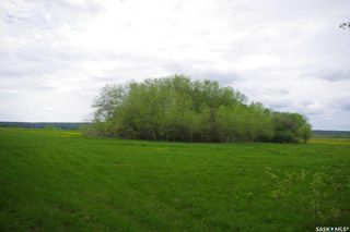 Photo 28: Weiss Lakefront Acreage in Big River: Farm for sale : MLS®# SK834154
