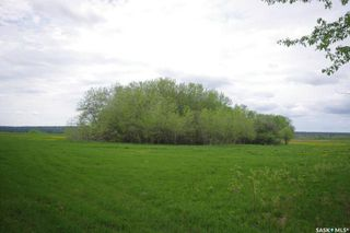 Photo 22: Weiss Lakefront Acreage in Big River: Farm for sale : MLS®# SK834154