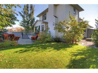 Photo 18: 230 SUNVISTA Court SE in Calgary: Sundance Residential Detached Single Family for sale : MLS®# C3637145