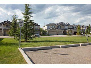 Photo 43: 73 ROYAL BIRCH Mount NW in Calgary: Royal Oak House for sale : MLS®# C4017593