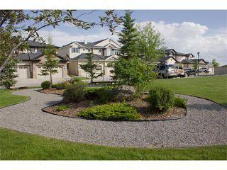 Photo 39: 73 ROYAL BIRCH Mount NW in Calgary: Royal Oak House for sale : MLS®# C4017593