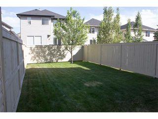 Photo 38: 73 ROYAL BIRCH Mount NW in Calgary: Royal Oak House for sale : MLS®# C4017593
