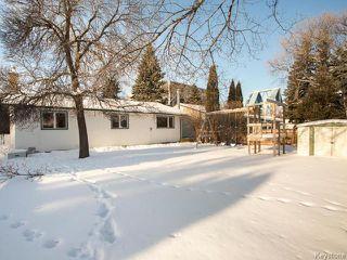 Photo 18: 68 University Crescent in Winnipeg: Fort Garry / Whyte Ridge / St Norbert Residential for sale (South Winnipeg)  : MLS®# 1601431