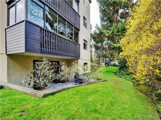 Photo 17: 108 1012 Collinson Street in VICTORIA: Vi Fairfield West Condo Apartment for sale (Victoria)  : MLS®# 362001