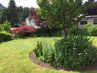 Photo 14: 65943 PARK Avenue in Hope: Hope Kawkawa Lake House for sale : MLS®# R2077504