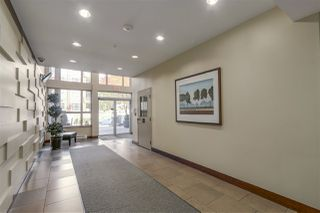 "Photo 13: 314 2484 WILSON Avenue in Port Coquitlam: Central Pt Coquitlam Condo for sale in ""VERDE"" : MLS®# R2112276"