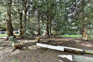 "Photo 13: 5760 144 Street in Surrey: Sullivan Station House for sale in ""SULLIVAN"" : MLS®# R2155815"