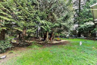 "Photo 15: 5760 144 Street in Surrey: Sullivan Station House for sale in ""SULLIVAN"" : MLS®# R2155815"
