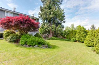 Photo 19: 378 54 Street in Delta: Pebble Hill House for sale (Tsawwassen)  : MLS®# R2167912