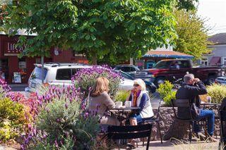 Photo 5: 1148 Oscar Street in VICTORIA: Vi Fairfield West Revenue 4-Plex for sale (Victoria)  : MLS®# 381212