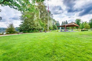 Photo 10: 3329 Henry St, Port Moody (R2204678)
