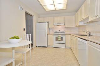 Photo 7: 216 19122 122 Avenue in Pitt Meadows: Central Meadows Condo for sale : MLS®# R2302440