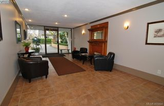 Photo 9: 310 2100 Granite Street in VICTORIA: OB South Oak Bay Condo Apartment for sale (Oak Bay)  : MLS®# 405894