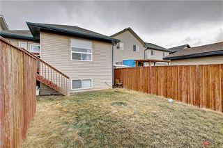 Photo 46: 207 SADDLEMEAD Close NE in Calgary: Saddle Ridge Detached for sale : MLS®# C4236086