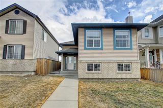 Photo 49: 207 SADDLEMEAD Close NE in Calgary: Saddle Ridge Detached for sale : MLS®# C4236086