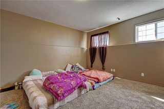 Photo 38: 207 SADDLEMEAD Close NE in Calgary: Saddle Ridge Detached for sale : MLS®# C4236086