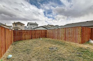 Photo 44: 207 SADDLEMEAD Close NE in Calgary: Saddle Ridge Detached for sale : MLS®# C4236086