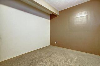 Photo 37: 207 SADDLEMEAD Close NE in Calgary: Saddle Ridge Detached for sale : MLS®# C4236086