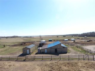 Photo 5: 21334 TWP RD 520: Rural Strathcona County House for sale : MLS®# E4153187