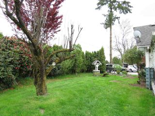 Photo 15: 13187 203 Street in Pitt Meadows: North Meadows PI House for sale : MLS®# R2365161