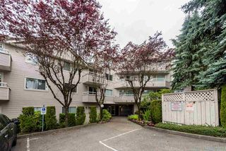 Main Photo: 402 450 BROMLEY Street in Coquitlam: Coquitlam East Condo for sale : MLS®# R2381132