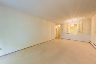 "Photo 6: 310 1710 W 13TH Avenue in Vancouver: Fairview VW Condo for sale in ""PINE RIDGE"" (Vancouver West)  : MLS®# R2384892"