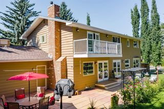 Photo 44: 775 WILLAMETTE Drive SE in Calgary: Willow Park Detached for sale : MLS®# C4297382