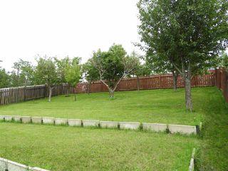 Photo 31: 15631 98 Street in Edmonton: Zone 27 House for sale : MLS®# E4205241