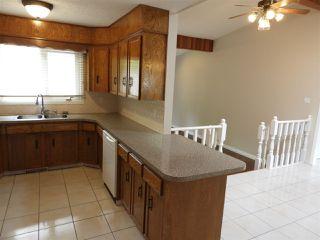 Photo 11: 15631 98 Street in Edmonton: Zone 27 House for sale : MLS®# E4205241