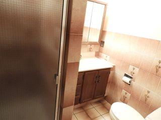 Photo 23: 15631 98 Street in Edmonton: Zone 27 House for sale : MLS®# E4205241
