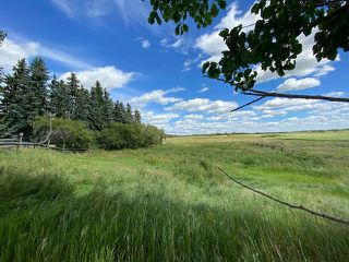 Photo 8: : House with Acreage for sale (MD of Provost)  : MLS®# A1024865