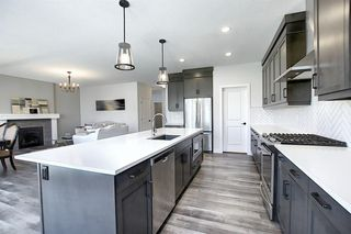 Photo 8: 436 DISCOVERY Place SW in Calgary: Discovery Ridge Detached for sale : MLS®# A1035589