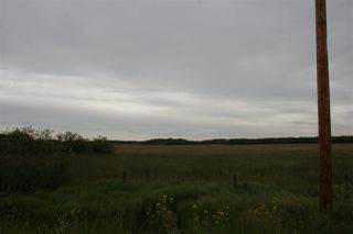 Photo 3: W4-17-50-14-NW: Rural Beaver County Rural Land/Vacant Lot for sale : MLS®# E4205947