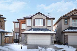 Main Photo: 381 Taralake Landing NE in Calgary: Taradale Detached for sale : MLS®# A1055128