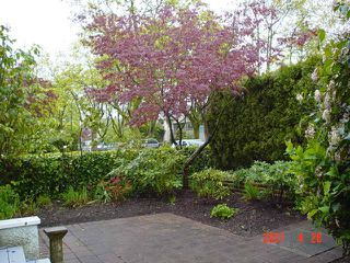 Photo 11:  in Vancouver: Home for sale : MLS®# V643045