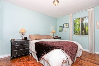 "Photo 13: 1619 RENTON Avenue in Port Coquitlam: Oxford Heights House for sale in ""OXFORD HEIGHTS"" : MLS®# R2061683"