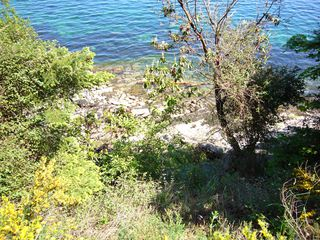 Photo 15: 148 Pilkey Point Road in Thetis Island: House  Land for sale : MLS®# 257031