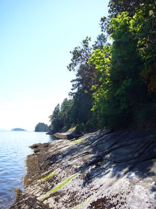 Photo 11: 148 Pilkey Point Road in Thetis Island: House  Land for sale : MLS®# 257031