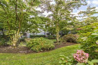 "Photo 19: 142 2980 PRINCESS Crescent in Coquitlam: Canyon Springs Condo for sale in ""THE MONTCLAIRE"" : MLS®# R2214588"