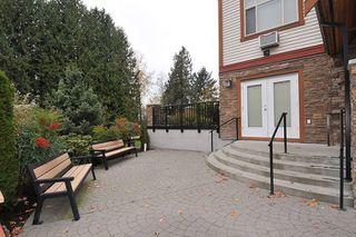 "Photo 16: 207 12525 190A Street in Pitt Meadows: Mid Meadows Condo for sale in ""CEDAR DOWNS"" : MLS®# R2222024"