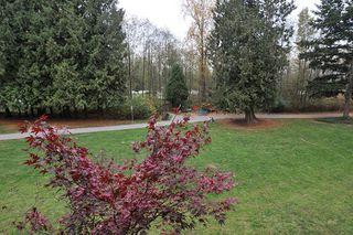 "Photo 12: 207 12525 190A Street in Pitt Meadows: Mid Meadows Condo for sale in ""CEDAR DOWNS"" : MLS®# R2222024"