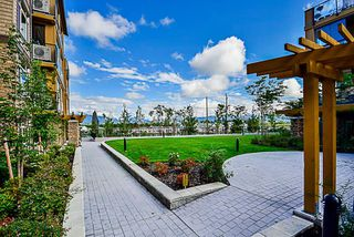 Photo 15: 409 12655 190A STREET in Pitt Meadows: Mid Meadows Condo for sale : MLS®# R2225101