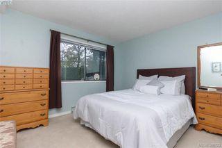 Photo 14: 206 1619 Morrison Street in VICTORIA: Vi Jubilee Condo Apartment for sale (Victoria)  : MLS®# 386722