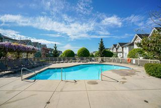 """Photo 20: 84 20540 66 Avenue in Langley: Willoughby Heights Townhouse for sale in """"AMBERLEIGH"""" : MLS®# R2265675"""